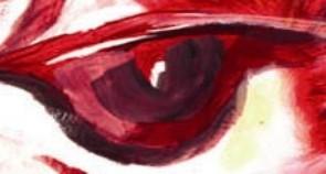 Im Auge des Autors